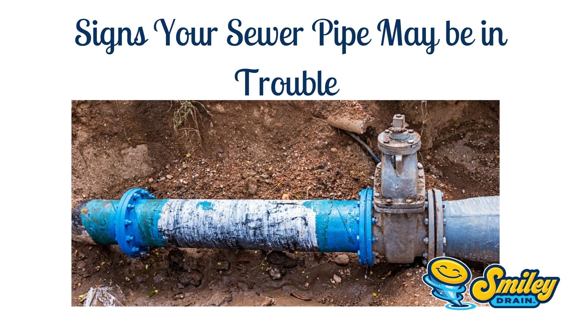 Signs your sewer line needs repaired