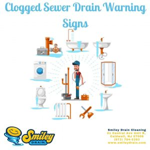 Warning Signs Your Have a Blockage in Your Sewer Line