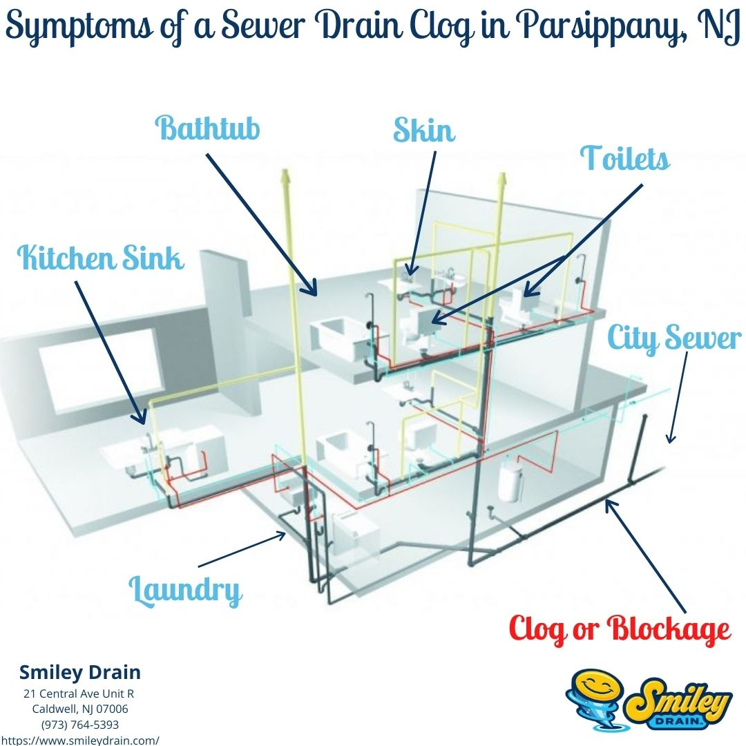 Parsippany NJ Drain Cleaning and sewer clog diagram