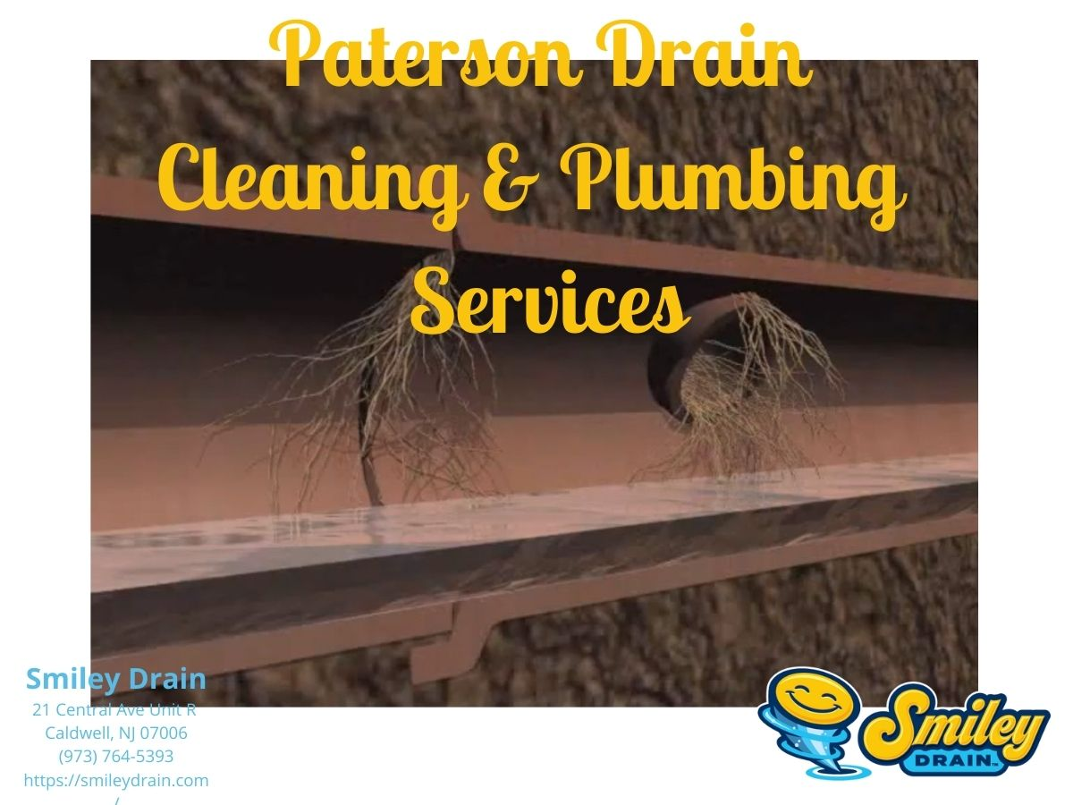 Platerson plumbing services