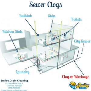 sewer clog diagram finding a clearing sewer drain